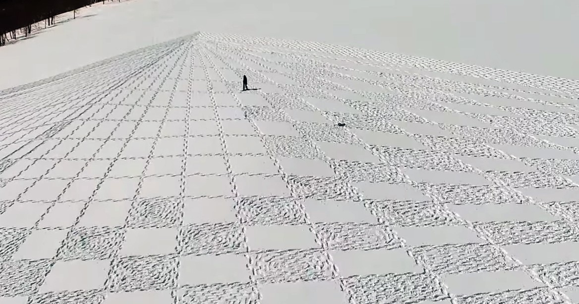 Artist Makes Snow Murals Using 40K of His Own Steps