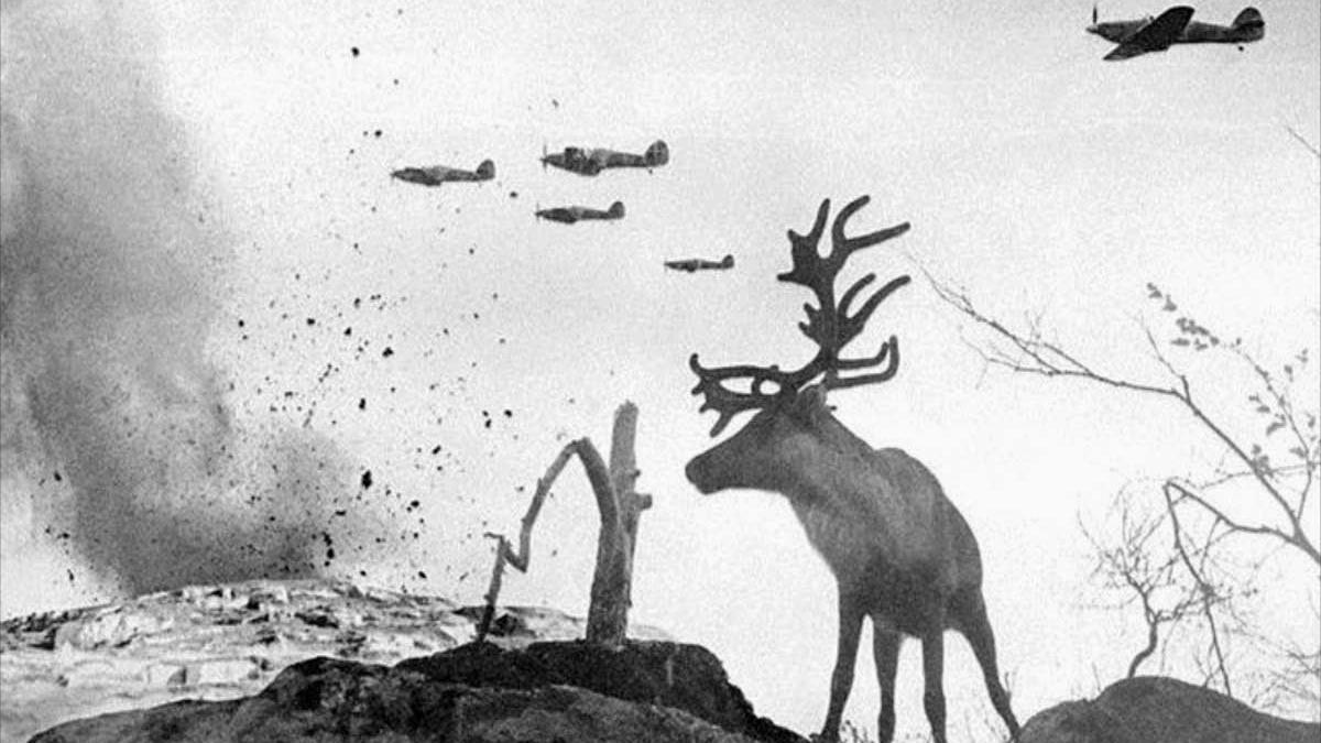 Shell-Shocked Reindeer in World War II