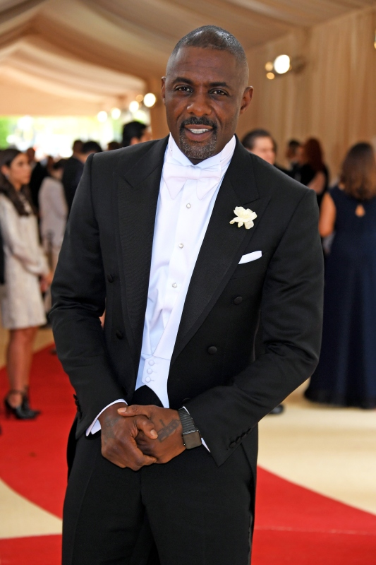Actor Idris Elba (Larry Busacca/Getty Images)