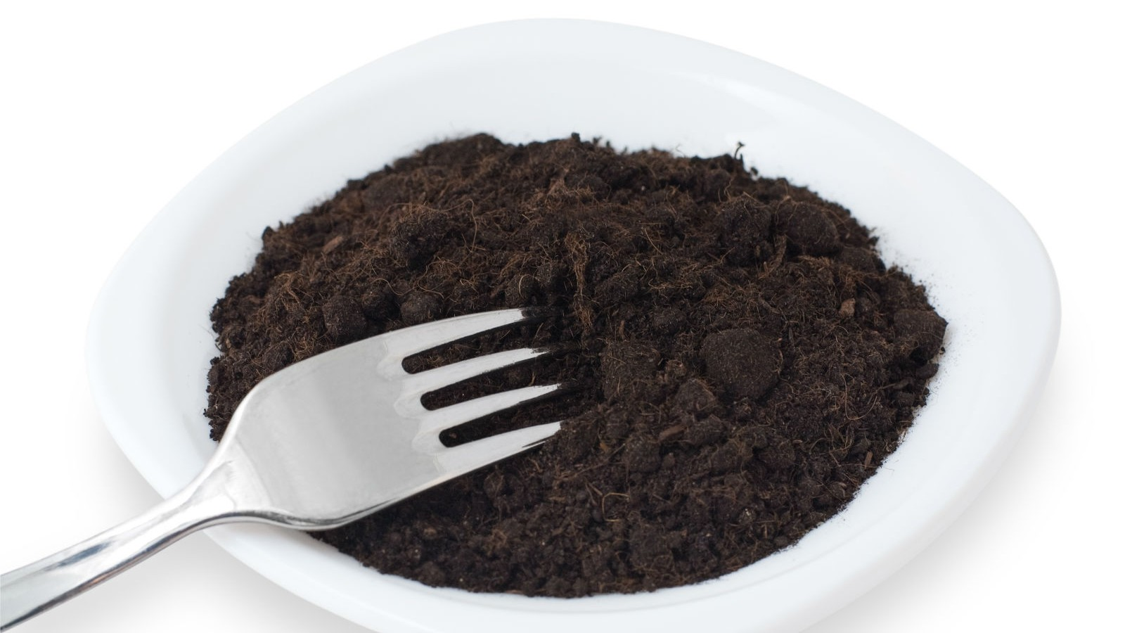 Plate of Dirt
