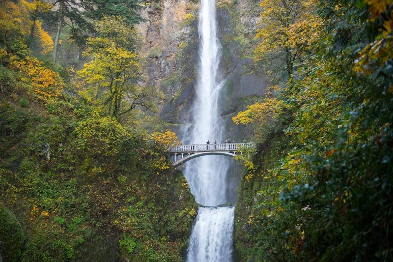 Tips for Visiting Portland from the Author of Fight Club http://www.wired.com/2016/05/what-to-do-in-portland/?mbid=social_twitter OREGON, UNITED STATES - 2014/11/07: View of Multnomah Falls with foot bridge in the fall, a waterfall near Portland along the Columbia River Gorge in Oregon, USA. (Photo by Wolfgang Kaehler/LightRocket via Getty Images)