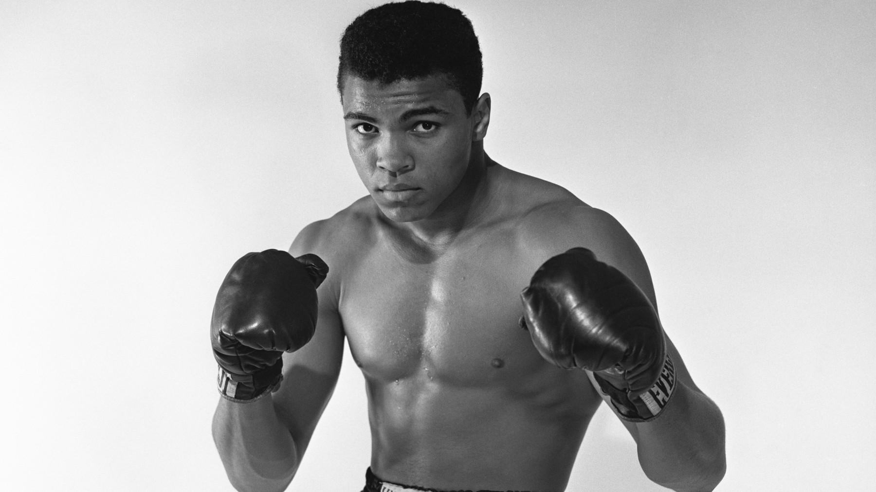 LONG ISLAND, NY - MAY 17:  Cassius Clay, 20 year old heavyweight contender from Louisville, Kentucky poses for the camera on May 17, 1962 in Long Island, New York.  (Photo by Stanley Weston/Getty Images)