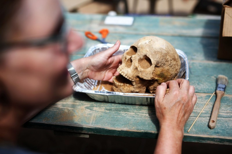 """US anthropologist and pathologist, Sherry Fox shows a skull discovered at the excavation site of the first Philistine cemetery ever found on June 28, 2016 in the Mediterranean coastal Israeli city of Ashkelon. With an excavation in southern Israel unearthing a Philistine cemetery for the first time, bones of the biblical giant Goliath's people can finally shed new light on mysteries of their culture. The cemetery's discovery marks the """"crowning achievement"""" of some three decades of excavations in the area, the expedition's organisers say. / AFP / MENAHEM KAHANA / TO GO WITH AFP STORY BY DAPHNE ROUSSEAU (Photo credit should read MENAHEM KAHANA/AFP/Getty Images)"""
