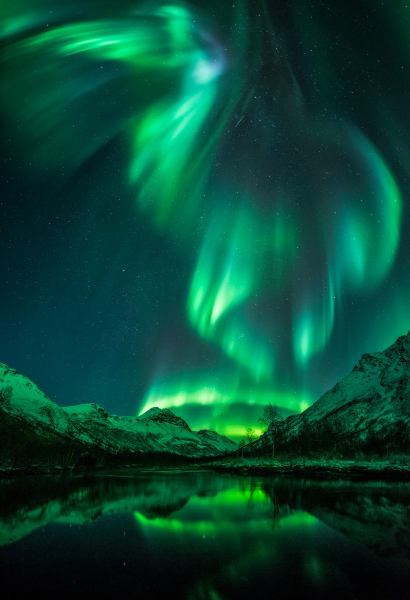The vivid green Northern Lights resemble a bird soaring over open water in Olderdalen, Norway. (Jan Olsen)