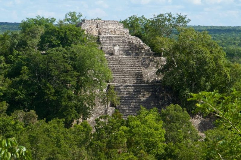 Calakmul Mayan city pyramid ruins, Temple I. The whole city is has been claimed by the jungle. Mayan pyramids occasionally can be seen peaking through canopy of the Calakmul Biosphere Reserve, a UNESCO world heritage site, northern Petén Basin region of Yucatán, southern Mexico. Ruins are of the Classic period.