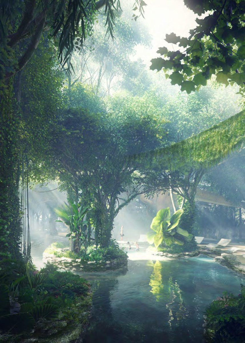 Stay at a Hotel in Dubai With Its Own Rainforest