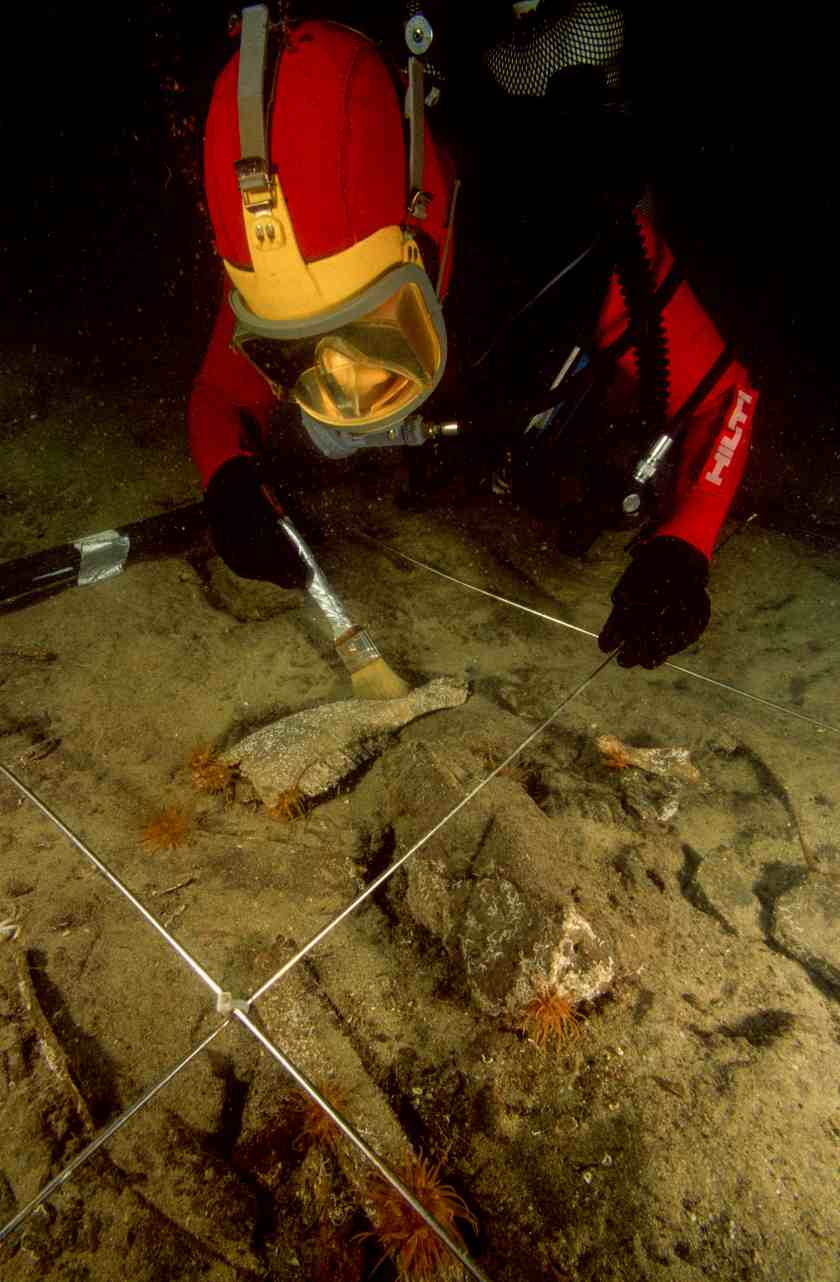 An archaeologist diver using a brush to clear remnants of f auna including a bovid jaw discovered under 2.5 cm of sand on the site of Canopus in Aboukir Bay. (Franck Goddio/Hilti Foundation)