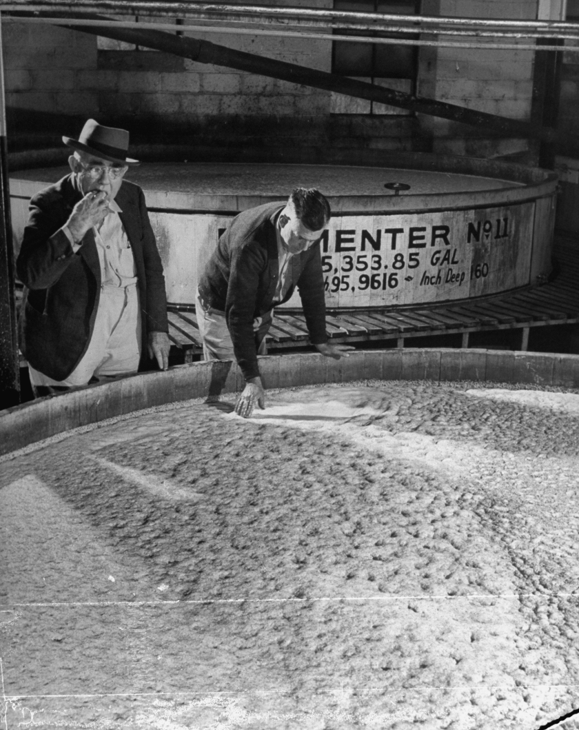 Tasters testing whiskey at Jack Daniels distillery. (Photo by Ed Clark/The LIFE Picture Collection/Getty Images)