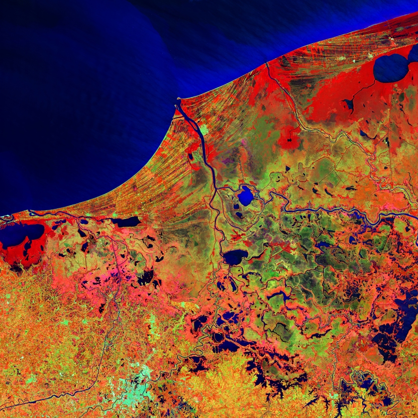 Much of this image consists of the Reserva de la Biosfera Pantanos de Centla, a biosphere reserve in southern Mexico that protects wetlands in the area. The water bodies, mangroves, and forests are a sanctuary for a great variety of wildlife. Sediment carried away by the Grijalva River appears as a sweeping light blue brushstroke flowing into the Gulf of Mexico at the top of the image. (USGS/NASA)
