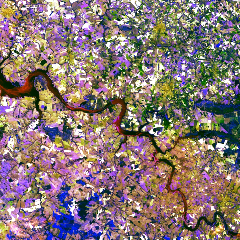 The Tietê River snakes across this tessera mosaic of multicolored shapes near Ibitinga, Brazil. Fields of sugarcane, peanuts, and corn vary in their stages of development. Lavender, purple, and bright blue indicate actively growing crops. Light yellow or white indicate little or no vegetation growth. The splotches of dark mustard yellow are urban areas. (USGS/NASA)
