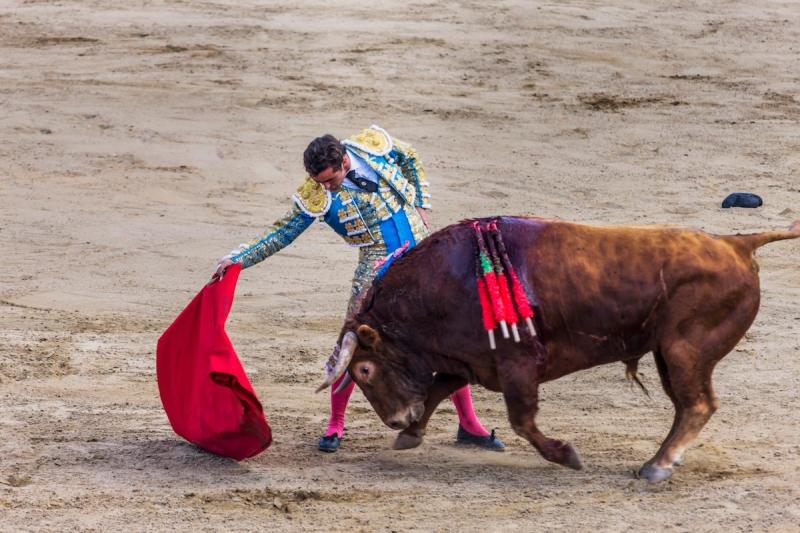 Spain, Castilla y Leon, Segovia . Festividad (festivity) de San Pedro y San Pablo, Corrida de Toros (bullfight)
