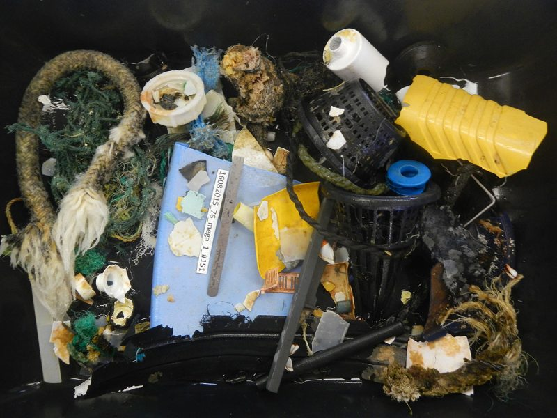 (The Ocean Cleanup)