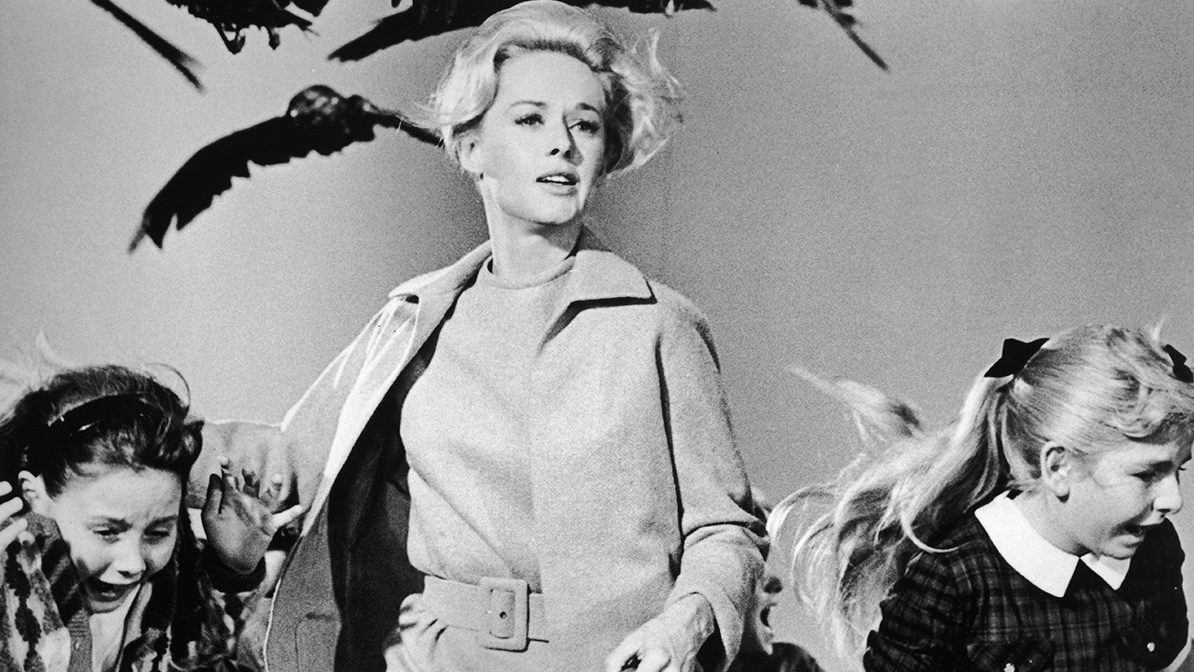 1963, American actor Tippi Hedren and a group of children run away from the attacking crows in a still from the film 'The Birds' directed by Alfred Hitchcock. (Universal Studios/Getty Images)