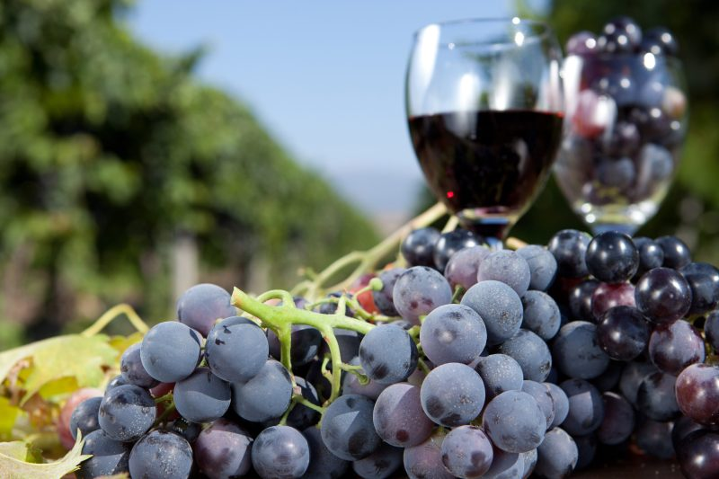 Red grape and wine on the table. (Getty Images)