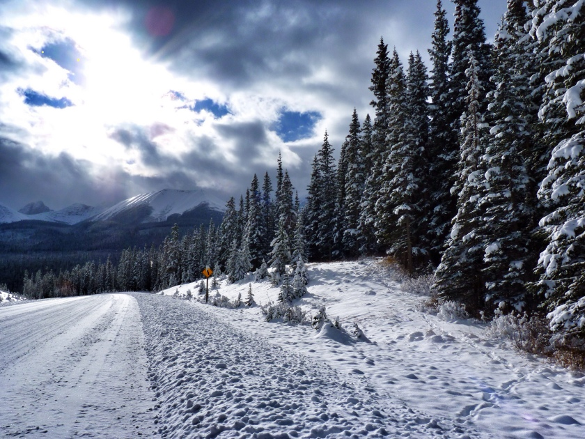 A snowy road favors the prepared (Fancylady/Flickr)