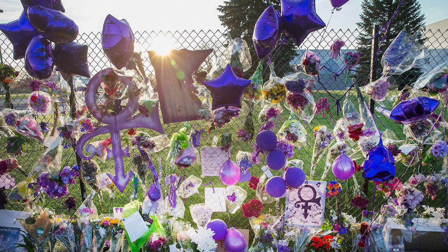 Mementos left by fans are attached to the fence which surrounds Paisley Park, the home and studio of Prince, on April 23, 2016 in Chanhassen, Minnesota. Prince, 57, was pronounced dead shortly after being found unresponsive April 21 in an elevator at Paisley Park.  (Scott Olson/Getty Images)