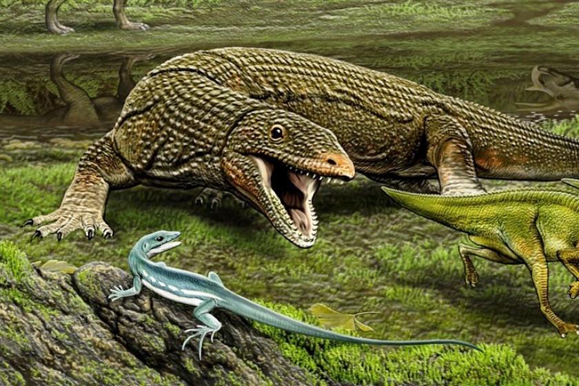Lizard, at left (Carl Buell/Handout)
