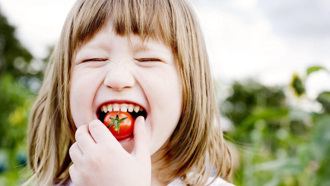 Young Girl(5-6) biting into cherry tomato, smiling, garden in background,Food and Drink, Food, Freshness, Nature, Vegetable, cherry tomato, tomato