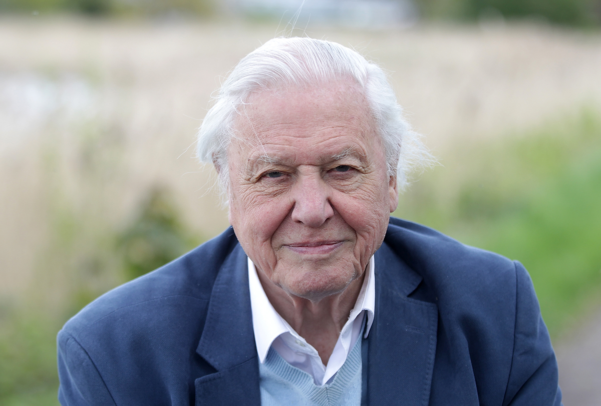 Sir David Attenborough opens Woodberry Wetlands on April 30, 2016 in London, United Kingdom. (Photo by Danny Martindale/WireImage)