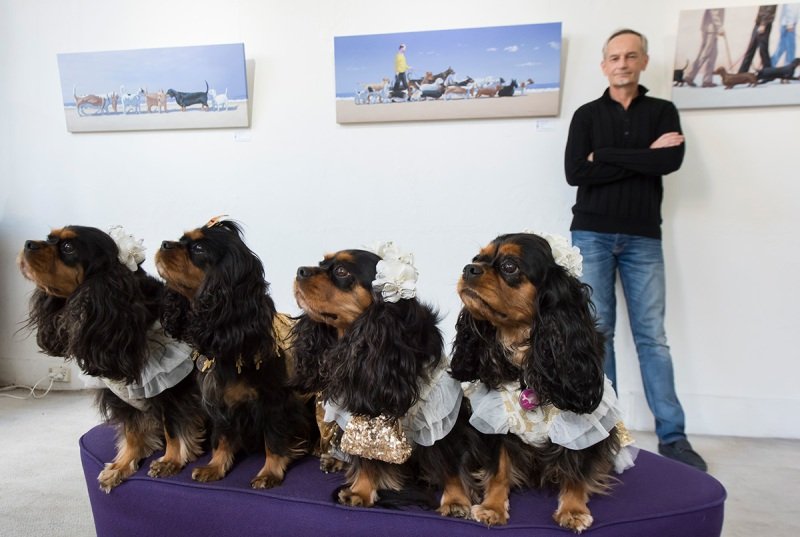 Artist Andrew Baines inside the Soho Galleries with some dogs on March 11, 2017 in Sydney, Australia. (James D. Morgan/Getty Images)
