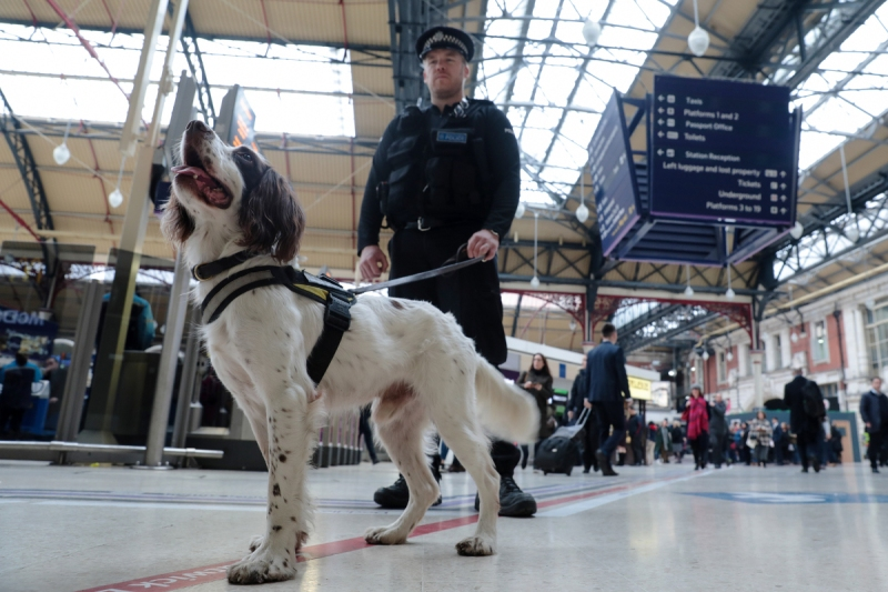 A Police dog handler escorts a sniffer dog through London Victoria railway station in central London, U.K., on Thursday, March 23, 2017. Parliament will return to work on Thursday after London's worst terror attack in more than a decade left five people dead, including the assailant and the police officer he stabbed. Photographer: Luke MacGregor/Bloomberg