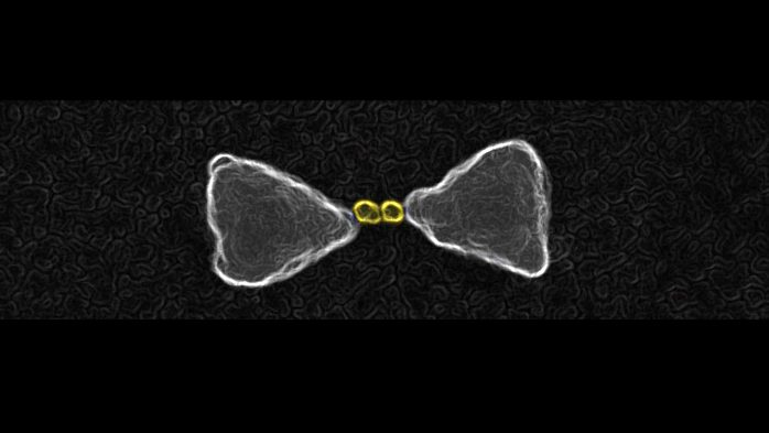 Gold nanoparticles chemically guided inside the hot-spot of a larger gold bow-tie nanoantenna. (Imperial College London)