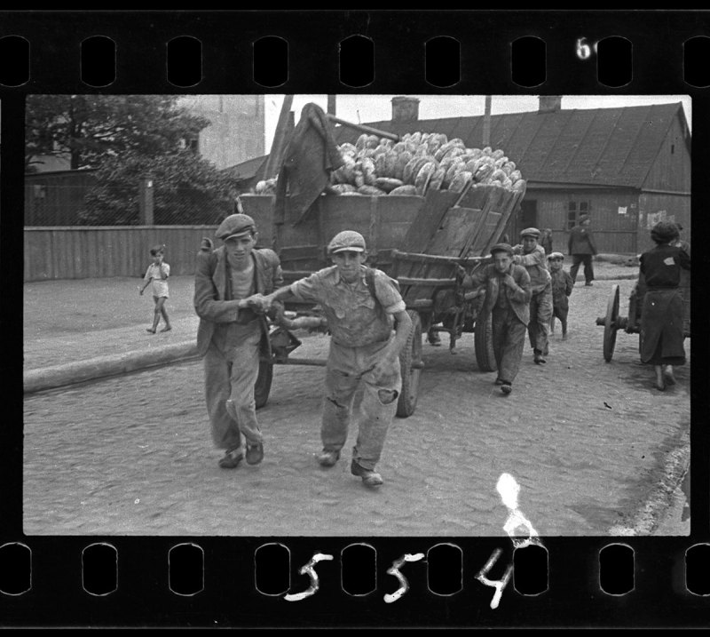 Lodz ghetto: Men hauling cart for bread distribution (Henryk Ross/Art Gallery of Ontario)