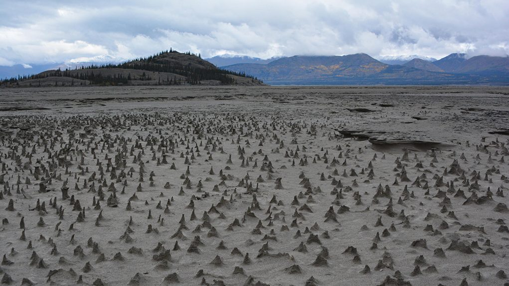 "Sections of the newly exposed bed of Kluane Lake contain small pinnacles. Wind has eroded sediments with a harder layer on top that forms a protective cap as the wind erodes softer and sandier sediment below. These pinnacles, just a few centimeters high, are small-scale versions of what are sometimes termed ""hoodoos."" (Jim Best/University of Illinois)"
