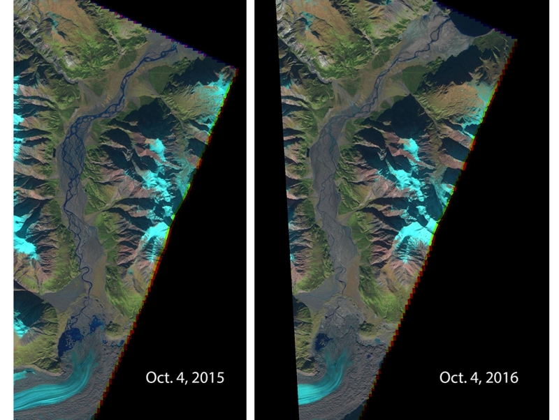 Images captured by the European Space Agency's Sentinel2 satellite in 2015 and 2016 show a dramatic drop in the Slims River's flow. The receding toe of Kaskawulsh Glacier is seen at the bottom. Kluane Lake can be seen at the top of the 2016 image. Water now flows east and then south via the Kaskawulsh River. (European Space Agency)