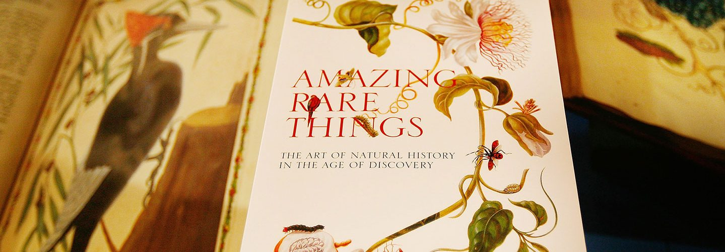 A catalogue for the Amazing Rare Things exhibition rests on a display case at The Queen's Gallery, Buckingham Palace on March 13, 2008 in London. The exhibition has been selected from the Royal Library by Royal Collection Curators in collaboration with naturalist and broadcaster Sir David Attenborough and displays the works of Leonardo da Vinci, Cassiano dal Pozzo, Alexander Marshal, Maria Sibylla Merian and Mark Catesby, four artists and a collector who have shaped our knowledge of the natural world. (Photo by Peter Macdiarmid/Getty Images)
