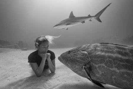 Meet a Real-Life Lara Croft: Cristina Zenato, Shark Conservationist