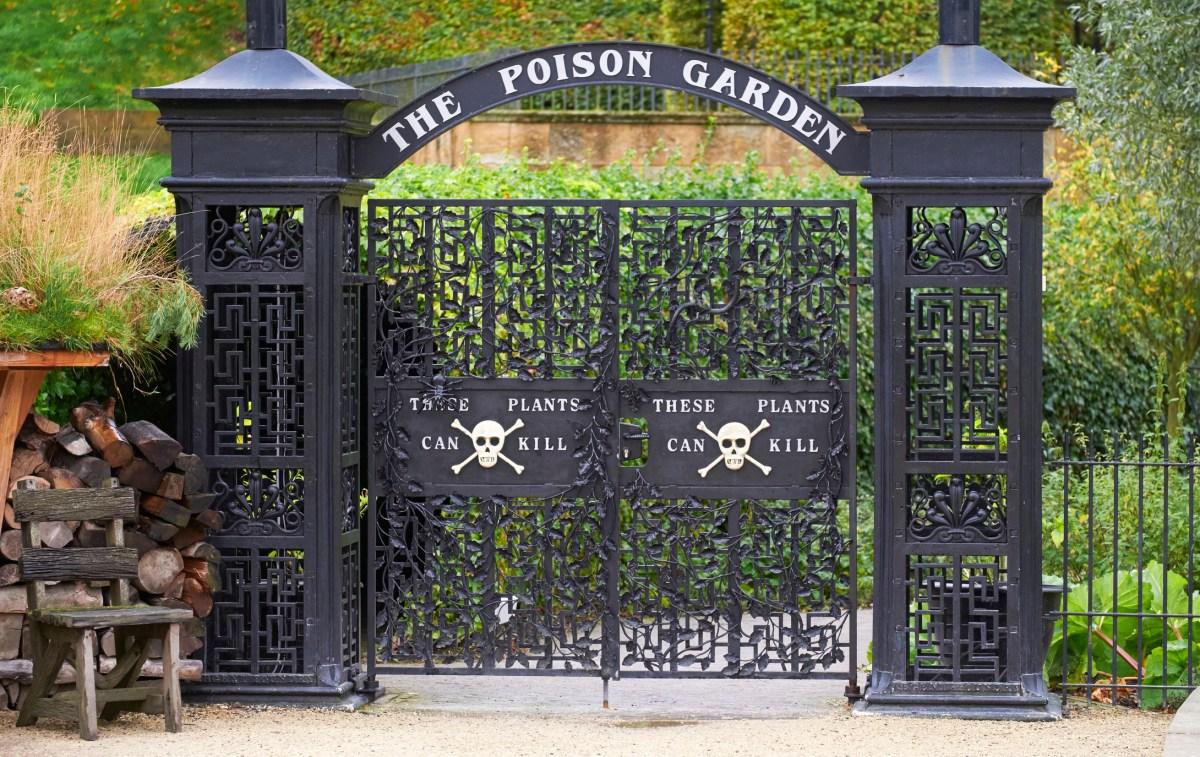 The Poison Garden at Alnwick Garden, Northumberland, England, UK.
