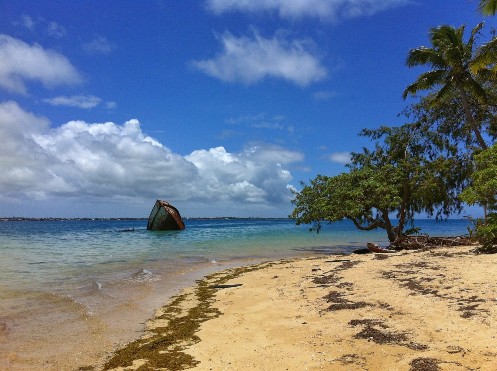 Photo Taken In Tonga, Nukualofa