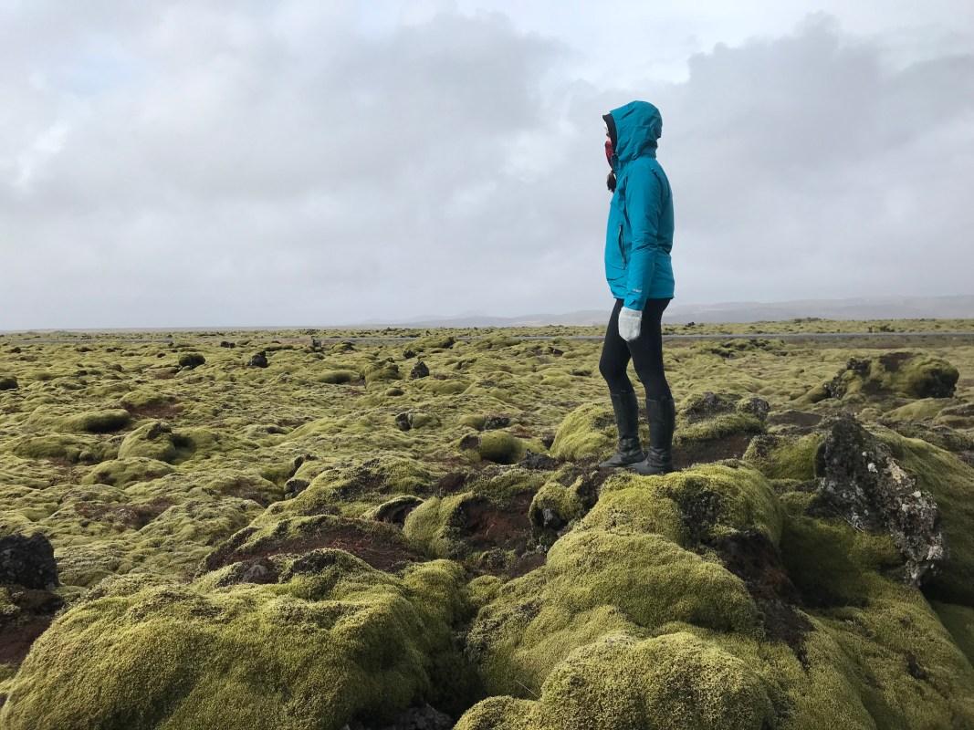 Mossy landscape of Iceland (Kinga Philipps)