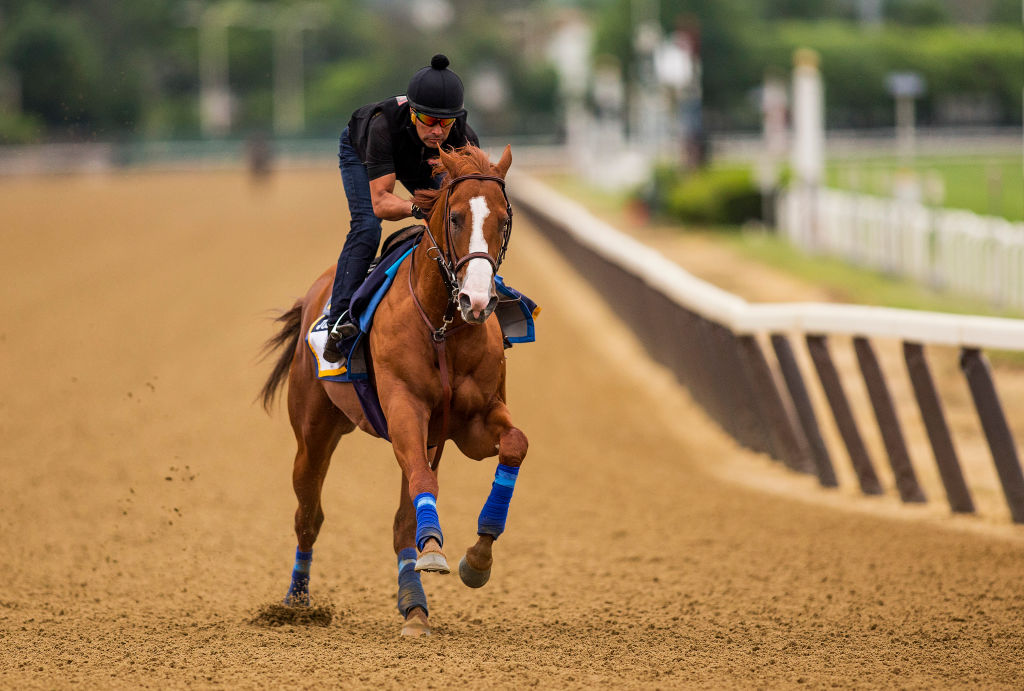 Justify with Humberto Gomez aboard gallops in preparation for the 150th Belmont Stakes at Belmont Park on June 07, 2018 in Elmont, New York. (Photo by Alex Evers/Eclipse Sportswire/Getty Images)