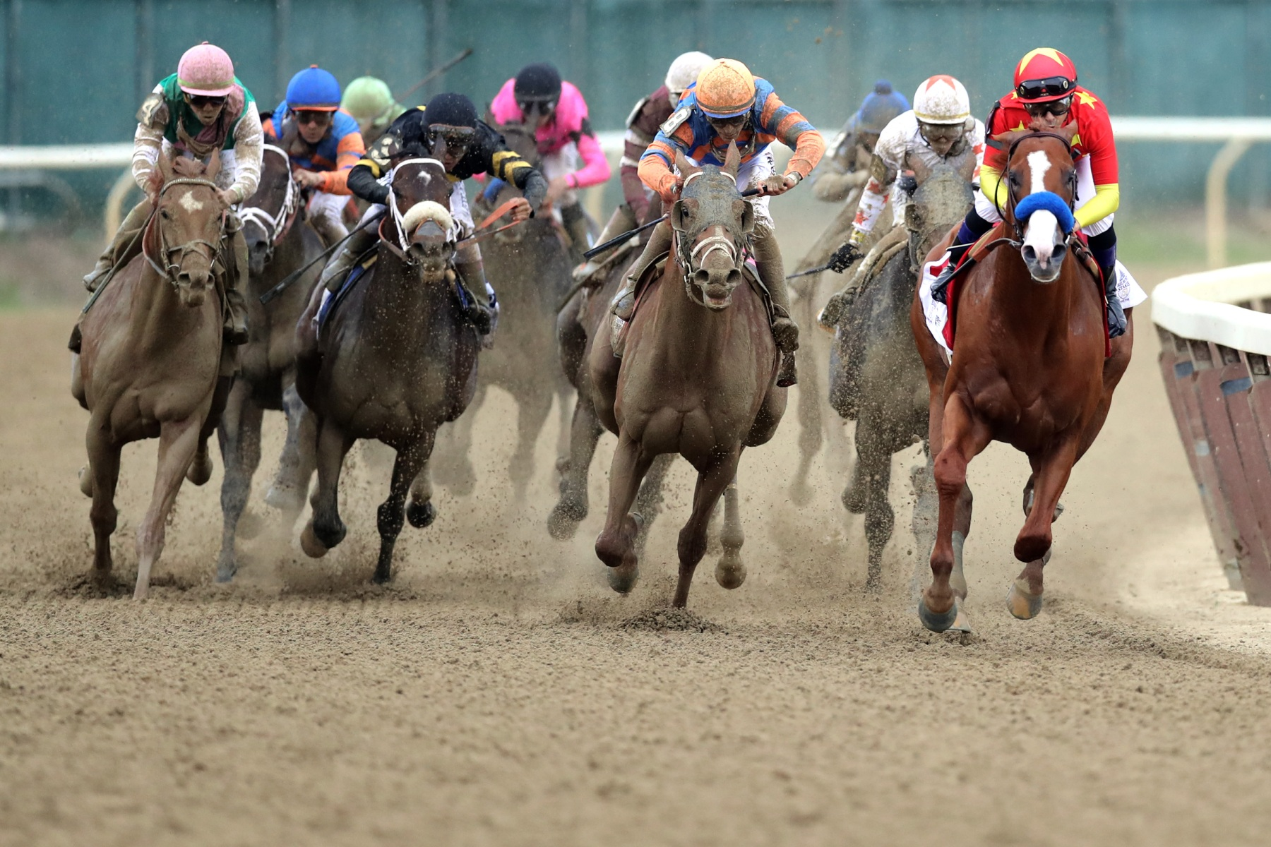 Justify #1, ridden by jockey Mike Smith leads the field around the 4th turn during the 150th running of the Belmont Stakes at Belmont Park on June 9, 2018 in Elmont, New York. Justify becomes the thirteenth Triple Crown winner and the first since American Pharoah in 2015.  (Photo by Jim McIsaac/Getty Images)