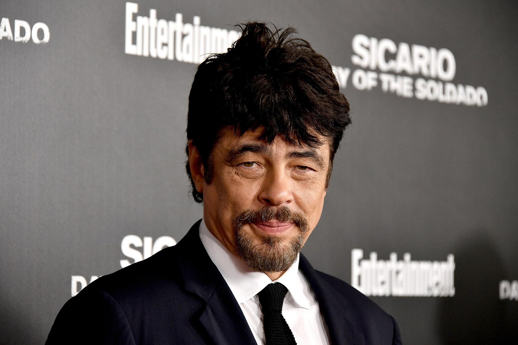Benicio Del Toro's Career Shifts Into A Higher Gear