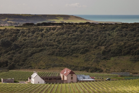 Rathfinny Wine Estate  (Rathfinny Wine Estate)