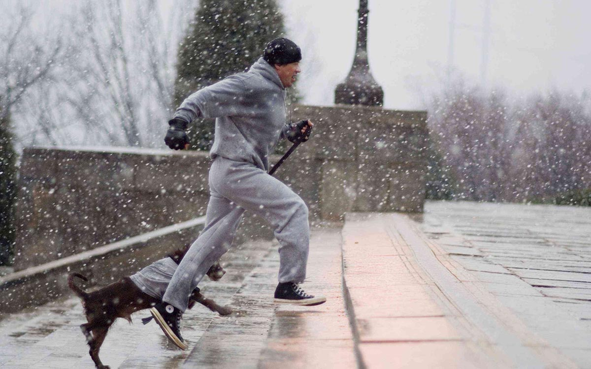 best+exercise+dvd+for+men+over+50