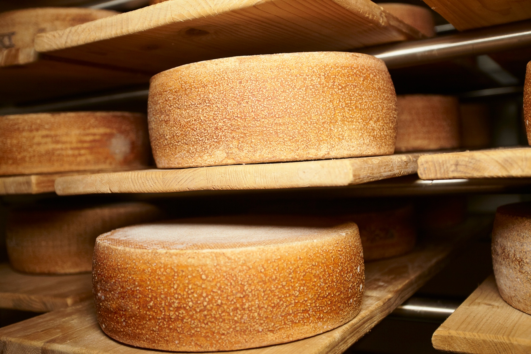 Scientists May Have Found Traces of 7,200-Year-Old Cheese in Croatia