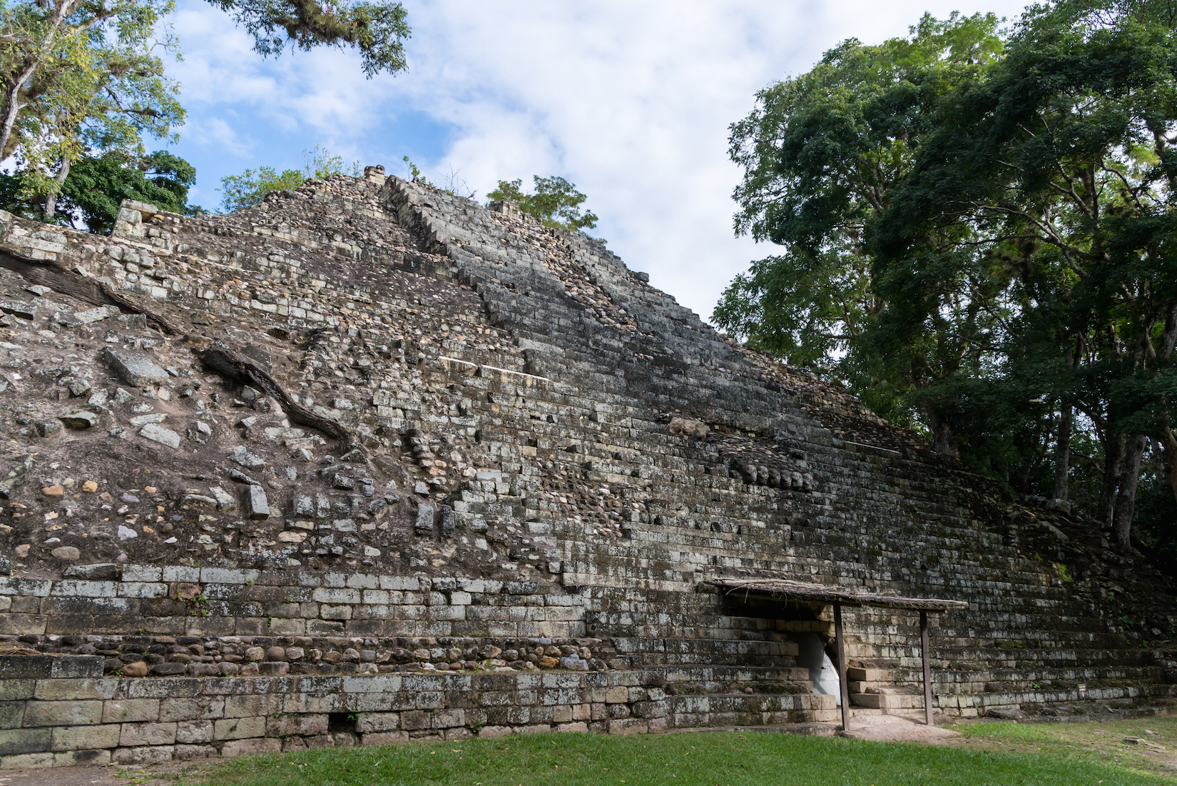 Jaguar Remains Offer New Evidence of Incredible Maya Trade Networks