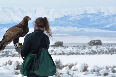 Meet a Real-Life Lara Croft: Lauren McGough, Anthropologist, Skydiver, Falconer