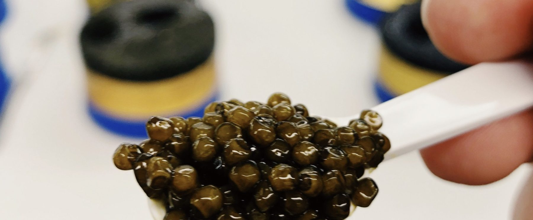 High-end caviar by Petrossian