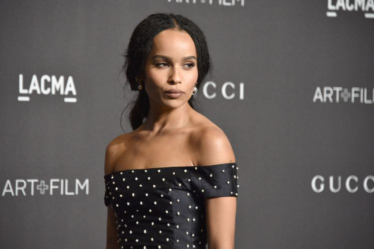 LOS ANGELES, CA - NOVEMBER 3: Zoe Kravitz attends LACMA Art + Film Gala 2018 at Los Angeles County Museum of Art on November 3, 2018 in Los Angeles, CA. (Photo by David Crotty/Patrick McMullan via Getty Images)