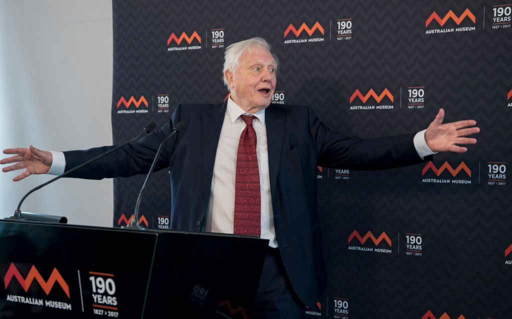 SYDNEY, AUSTRALIA - FEBRUARY 08:  Sir David Attenborough at the Australian Museum to receive a Lifetime Patron award at a special luncheon on February 8, 2017 in Sydney, Australia. Sir David was recognised for his lifetime's work in the fields of natural science and conservation. (Photo by James D. Morgan/Getty Images)