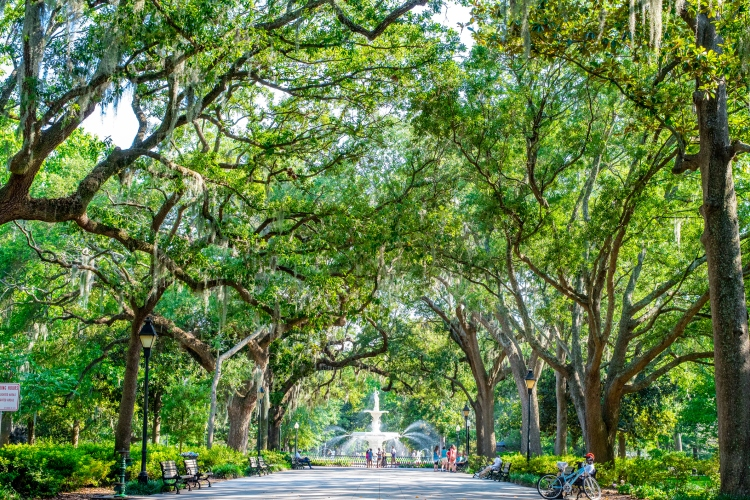 Forsyth Park is worth getting lost in while spending the weekend in Savannah, GA. (Getty)