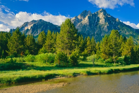 The Sawtooth Range sits in the distance in  a meadow, in the Sawtooth National Recreation Area of Stanley, Idaho.