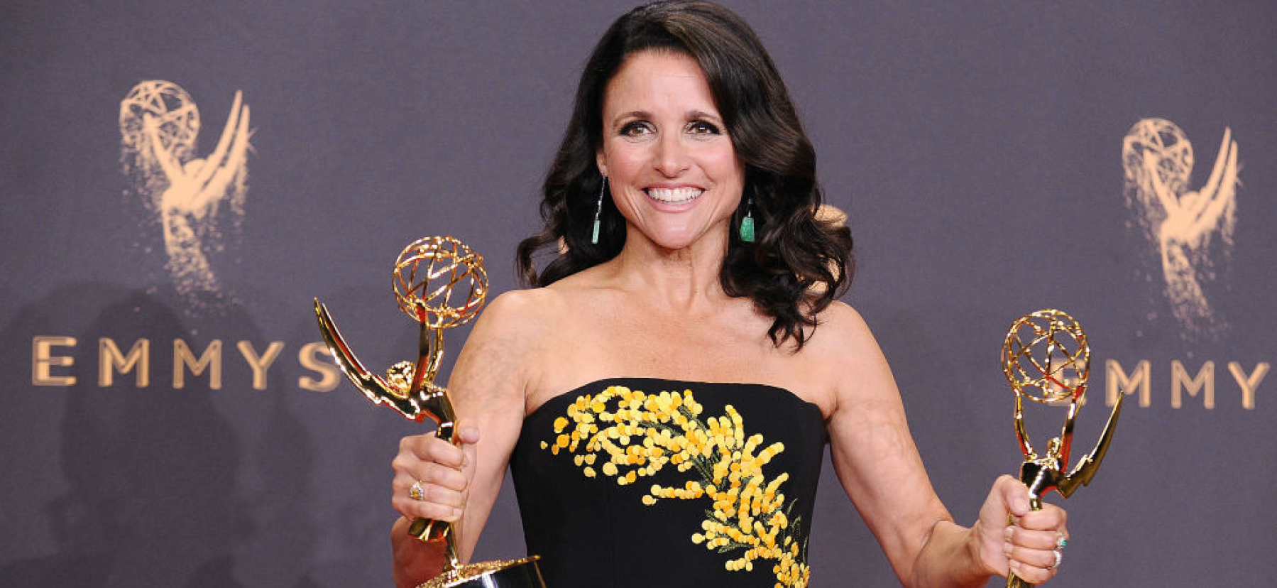 LOS ANGELES, CA - SEPTEMBER 17: Actress Julia Louis-Dreyfus poses in the press room at the 69th annual Primetime Emmy Awards at Microsoft Theater on September 17, 2017 in Los Angeles, California. (Photo by Jason LaVeris/FilmMagic)