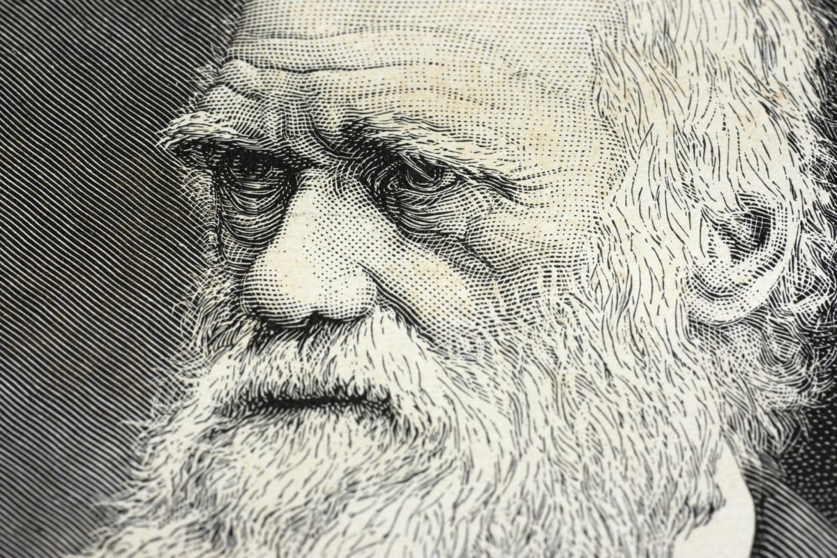 Detail of a portrait of Charles Darwin with selective focus on the eyes. (Getty)
