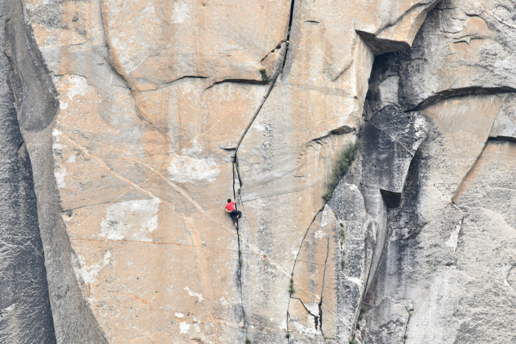 "Alex Honnold of ""Free Solo"" climbing up El Capitan. (Mark Synnott)"
